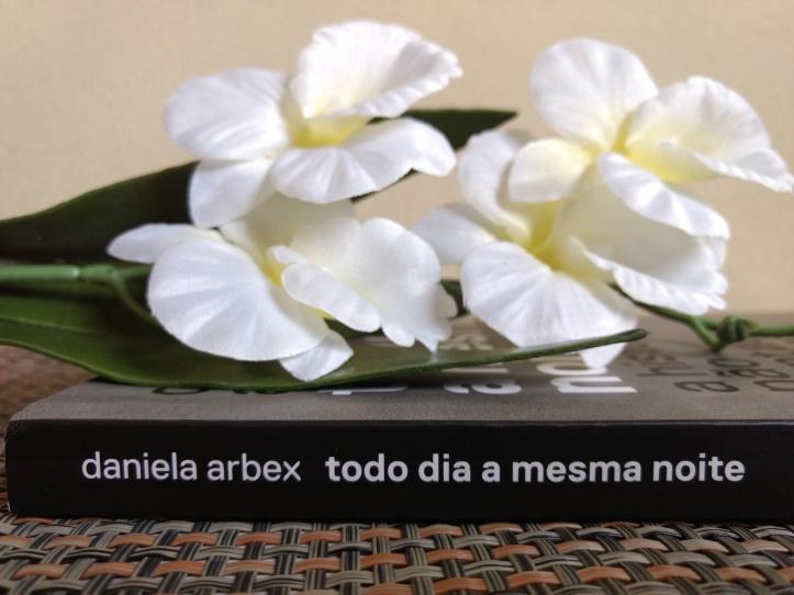 Todo dia a mesma noite Daniela Arbex